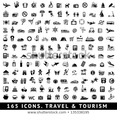 Turizmus kikapcsolódás vakáció ikon szett sport utazás Stock fotó © Ecelop