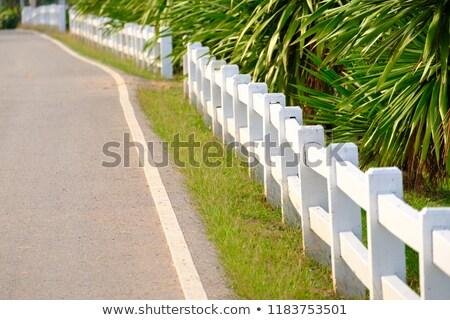 white picket fence alongside a garden Stock photo © marekusz