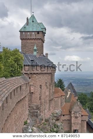 around haut koenigsbourg castle in france stock photo © prill
