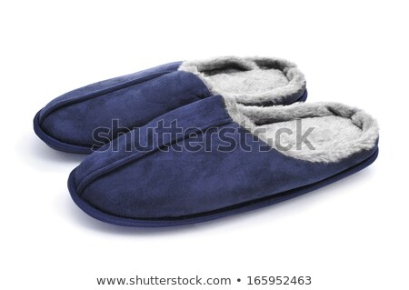 Pair of male house slippers isolated on white background Stock photo © shutswis