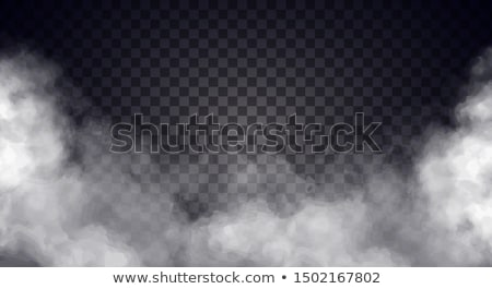 Absztrakt füst izolált fekete tűz terv Stock fotó © kawing921