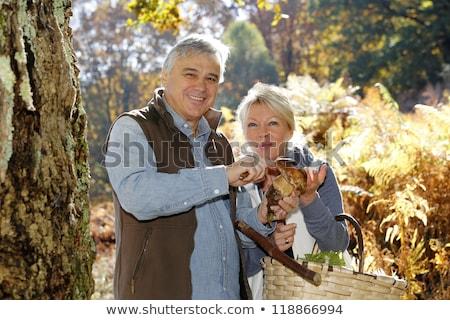 couple picking mushrooms stock photo © photography33