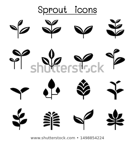Plants sprouting from landscape Stock photo © zzve