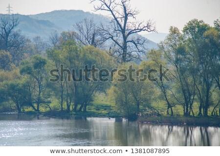 ストックフォト: Mures River