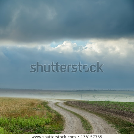 未舗装の道路 · を実行して · 茂み · 土地 · 道路 · 青 - ストックフォト © mycola