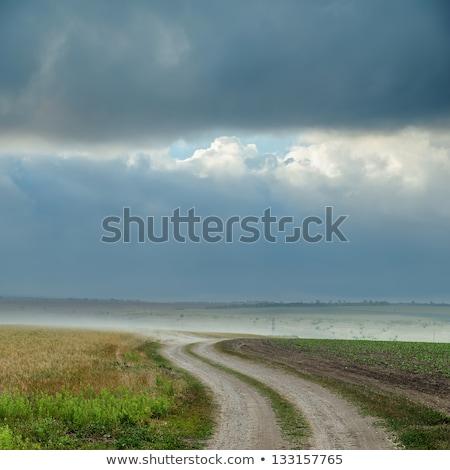 dramatisch · stormachtig · hemel · donkere · wolken · regen - stockfoto © mycola