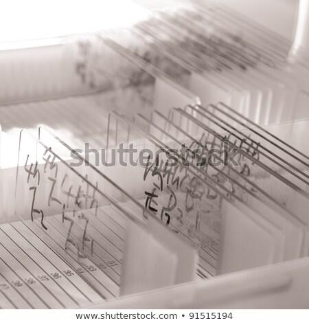 Education Concept on Label Holder. Stock photo © tashatuvango