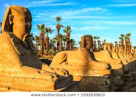 Tapınak luxor Mısır seyahat mimari yol Stok fotoğraf © eleaner