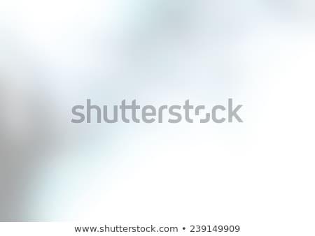 Abstract witte mineraal textuur natuur ontwerp Stockfoto © jonnysek