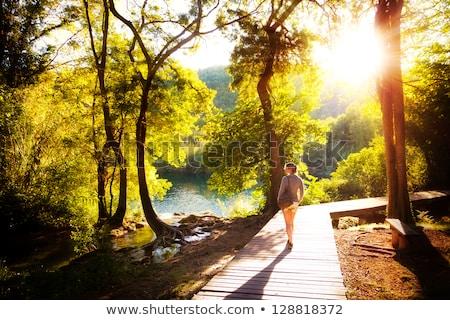sétál · természet · tavasz · nő · gyaloghíd · zöld - stock fotó © olandsfokus