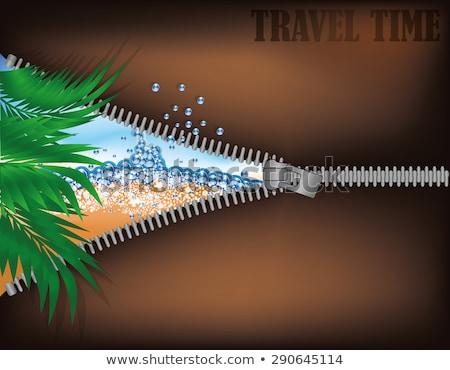 Viajar tempo zíper abertura praia tropical vetor Foto stock © carodi