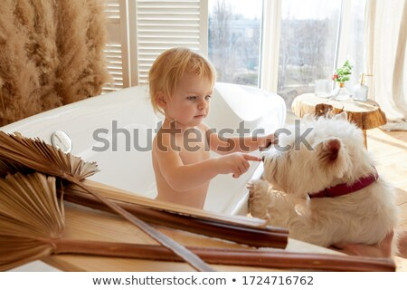 Beautiful blonde on couch with pet dog Stock photo © wavebreak_media