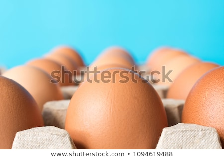 Lots of Eggs Stock photo © AlienCat