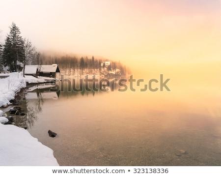 fagyott · idő · kevés · közelkép · víz · háttér - stock fotó © fesus