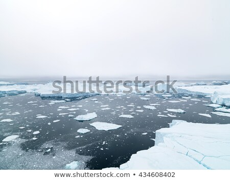 melting ice over the Greenland Stock photo © mady70