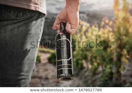 waiter holding bottle of alcohol stock photo © rastudio