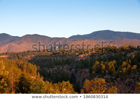 sunrise · New · Mexico · pin · forêt · USA · froid - photo stock © qingwa