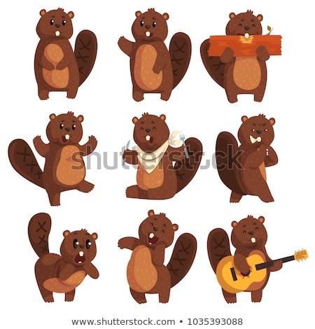 Karikatür kunduz gitar örnek oynama elektrogitar Stok fotoğraf © cthoman