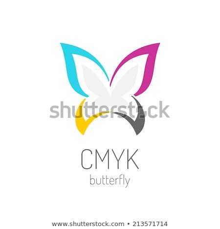 Nyomtatás ikon pillangó logo vektor szimbólum Stock fotó © blaskorizov