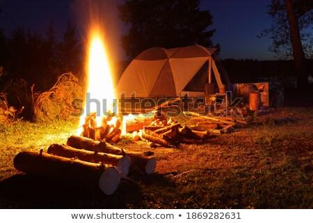 Camping plaats natuur milieu tent vreugdevuur Stockfoto © robuart