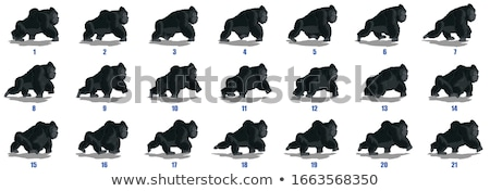 Gorilla natuur frame illustratie blad achtergrond Stockfoto © bluering