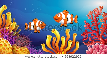 Underwater scene with clownfish and sea urchin Stock photo © colematt