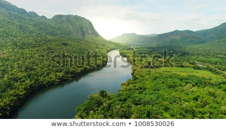 aerial view of the drone on the greenery of trees on a summer day natural background stock photo © artjazz
