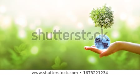 Earth Day concept for safe and Green Globe Stok fotoğraf © vectomart