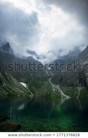Gyönyörű tájkép tó erdő hegyek fenyőfa Stock fotó © MarySan