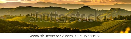 panoramic landscape in Styria, Austria Stock photo © borisb17