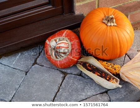 Turks Turban gourd with colourful ornamental corn and pumpkin Stock photo © sarahdoow