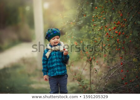 Jongen jaren vers natuur najaar Stockfoto © ElenaBatkova