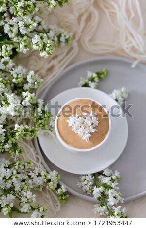 Tea time concept Stock photo © grafvision