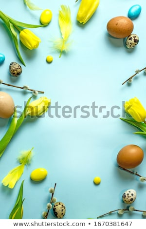 Easter background with quail eggs and pussy willow Stock photo © furmanphoto
