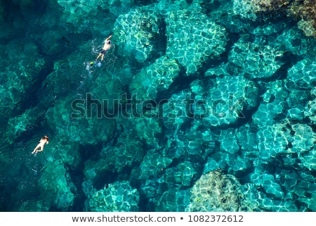 Couple snorkeling in the blue sea ocean and coral background aerial top view Stock photo © galitskaya
