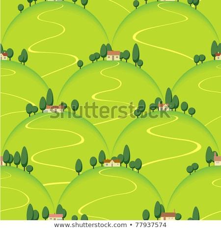 Farming Landscape Seamless Pattern Vector Stock photo © pikepicture