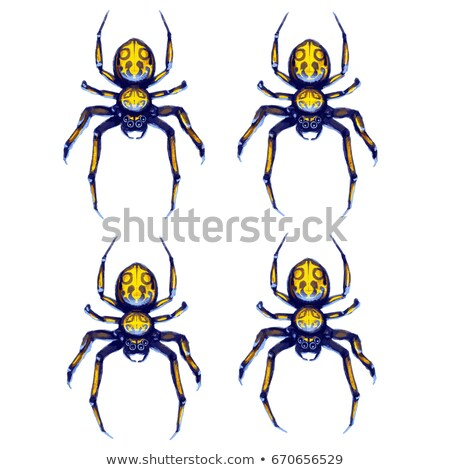 Sprite sheet of crawling spider, game art animation Stock photo © evgeny89