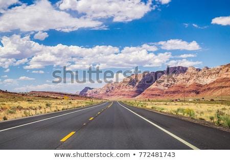 Arizona · verkeersbord · woestijn · teken · reizen · snelweg - stockfoto © kbuntu