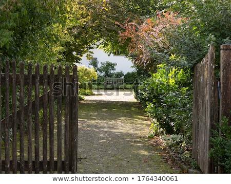 País jardim portão céu flor Foto stock © Frankljr