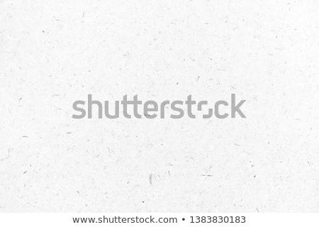 Гранж бумаги коллекция различный частей белый Сток-фото © pkdinkar