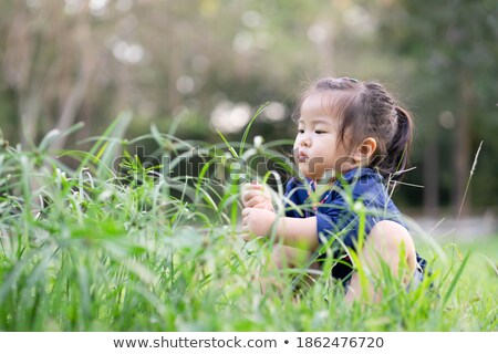 Stock photo: Beautiful child picks flowers