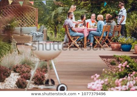 Zomer tuinieren Rood gieter gazon flower bed Stockfoto © stevemc