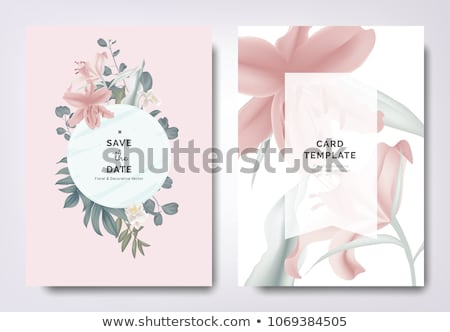 Floral frame with lily flowers and green leaf Stock photo © boroda