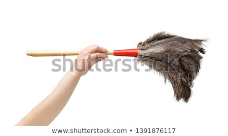 Cropped shot of a woman with a feather duster Stock photo © photography33