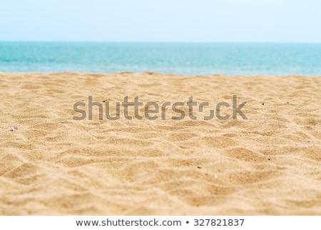 золото песчаный пляж пляж текстуры природы Сток-фото © grivet