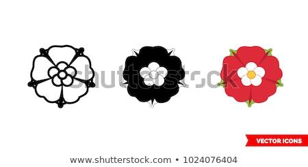 Pajzs rózsa keret felirat klasszikus gótikus Stock fotó © creative_stock