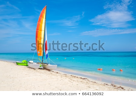 white boat on a tropical beach stock photo © tommyandone