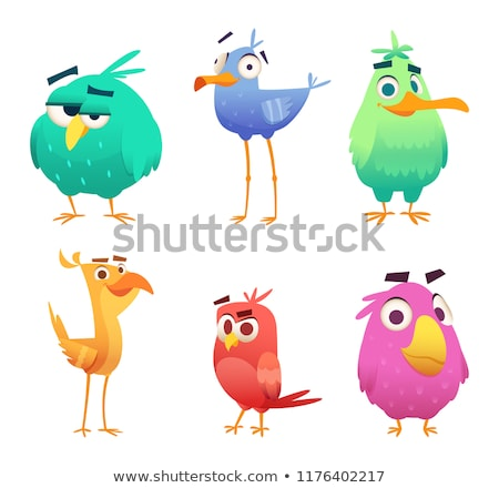 Vicces madár gyűjtemény terv tyúk kék Stock fotó © Genestro