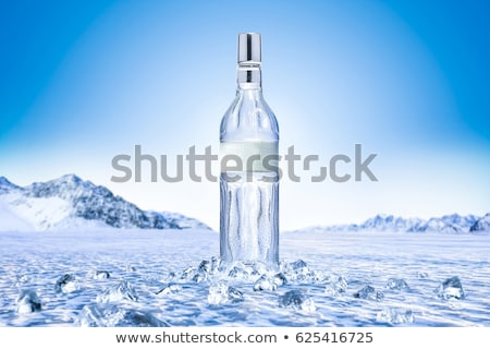 Shot of vodka with ice cubes Stock photo © karandaev