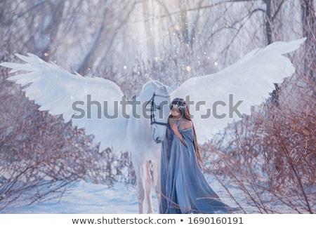 Girl stroking white horse Stock photo © photography33